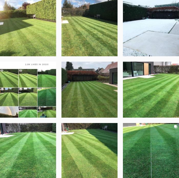 Milati passie voor gras @tomdlawn instagram gras lawnstripes groen